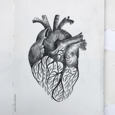 "6,474 Beğenme, 36 Yorum - Instagram'da Alfred Basha (@alfredbasha): """"heart and branches"""""