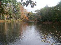 Lamprey River New Hampshire