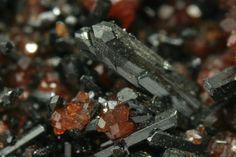 Gaudefroyite avec Andradite. N'Chwaning Mine, Südafrika Taille=4.5 mm Copyright Dominik Schläfli