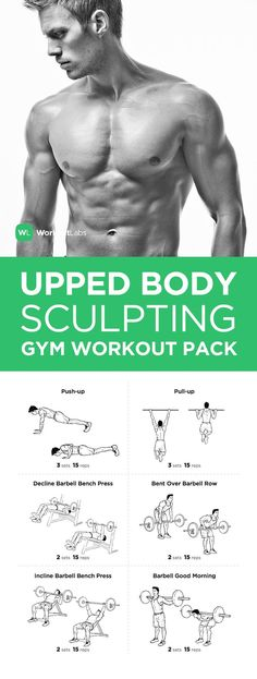 FITNESS - Visit WorkoutLabs.com/... to download this Upper Body Sculpting Gym Workout Pack for Men & Women