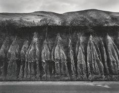 WYNN BULLOCK  1902 - 1975 Erosion Date:1959