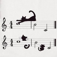 kitty cats Jazz for Cool Cats Cool Cats, I Love Cats, Crazy Cat Lady, Crazy Cats, Gatos Cats, Cats Musical, Here Kitty Kitty, Kitty Cats, Cat Drawing