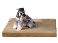 Special Offers - Sofantex 3 Premium Orthopedic Memory Foam Dog Bed with Extra Waterproof Velour Cover (24 x 18 Taupe) - In stock & Free Shipping. You can save more money! Check It (September 02 2016 at 09:53PM) >> http://dogcollarusa.net/sofantex-3-premium-orthopedic-memory-foam-dog-bed-with-extra-waterproof-velour-cover-24-x-18-taupe/