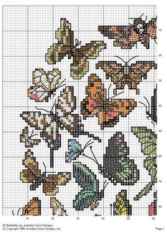 63 Butterflies 1/10