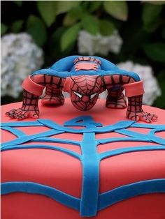 Even Spiderman couldn't resist this cake. #spiderman #cake