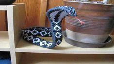 snake origami 3d - Tìm với Google