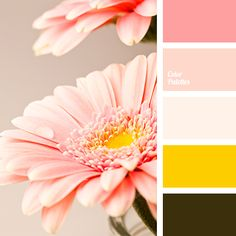 Gamma of pink flowery shades is complemented by rich yellow and dark khaki. This colour solution can be used in the design of kitchen and spacious living r.