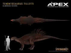 Tenontosaurus tilletti by Herschel-Hoffmeyer on deviantART: