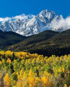 Photo @materas // A fresh coat of early autumn snow on Mt. Sneffels, southwest Colorado near Ridgway. At 14,158', Mt. Sneffels is the highest peak in the Sneffels Range and the highest peak in Ouray County. The stunning display of autumn color peaks in late September/early October. Follow me @materas for more images like this from the Colorado and around the world. #autumn #colorado #sanjuanmountains #aspen