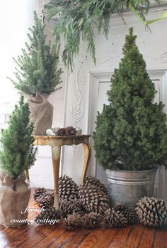 This would be awesome on the front porch! Use pine cones and small pine trees in burlap wrapped pots or metal buckets for a simple, natural look for your holiday decor. French Country Christmas, Cottage Christmas, Mini Christmas Tree, Natural Christmas, Rustic Christmas, Simple Christmas, Beautiful Christmas, Winter Christmas, Christmas Greenery