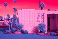 Infra Realism infrared photo series of Palm Springs modernist architecture by Kate Ballis Edgar Mueller, Melbourne, Modernism Week, Palm Springs California, Hotel California, Infrared Photography, Fotografia Macro, The Guardian, Home Art