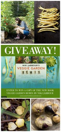 Enter to win a copy of the new book Veggie Garden Remix by Niki Jabbour! Have your must successful gardening season yet! | angiethefreckledrose.com