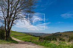 Frühlings-Landschaft - Landschaft, Frühling, Wiese, Wald, Baum, Himmel, Wolken, Naturfotografie - http://ronni-shop.fineartprint.de