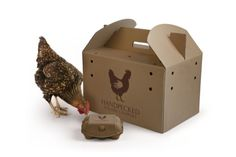 Coley Porter Bell has created the hen-based branding for start-up company Handpecked, a UK-based live poultry supplier.