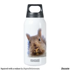 Squirrel with a walnut insulated water bottle