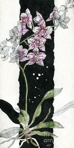 Flower ORCHID 04 Elena Yakubovich Painting  - Flower ORCHID 04 Elena Yakubovich Fine Art Print