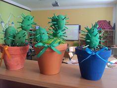 kaktus z brambor