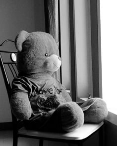 Teddy is still waiting...