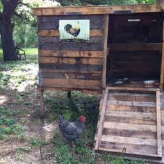 DIY Chicken Coop from pallets and scrapes... Plus really cute pics of the baby chicks going up. Lakesidehomestead.blogspot.com