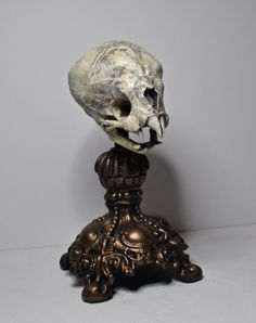 Nosferatu Fetal Skull Display $60.00