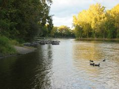Angrinon Park Montreal Destinations, Beautiful Scenery, Montreal, River, Park, Nature, Outdoor, Top 5, Attraction