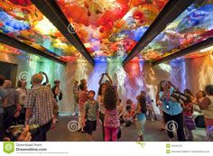 Photo about The Chihuly glass ceiling room made up of various pieces of glass sculptures located in the Boston Museum of Fine Arts. Image of reflection, beautiful, colors - 20653357 Image Photography, Editorial Photography, Glass Pavilion, Boston Museums, Boston Travel, Boston Things To Do, Glass Museum, Dale Chihuly, Glass Ceiling