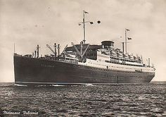 American Export Lines Ship Postcards