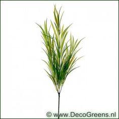Decogreens Gras tak x3  75cm, +/- 3euro