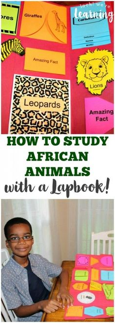 How to Study African Animals with a Lapbook - My kids absolutely loved this unit, especially since there were so many hands-on activities!
