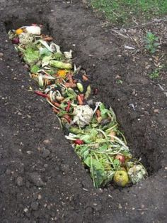 Trenching, as discussed in our DIY garden beds post, trenching is way of composting by digging a trench roughly 3-feet deep and filling it with compostable