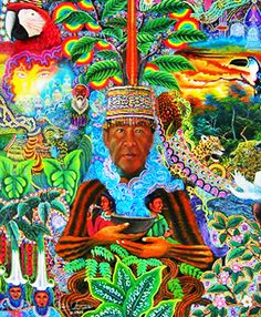 Ayahuasca - Google Search