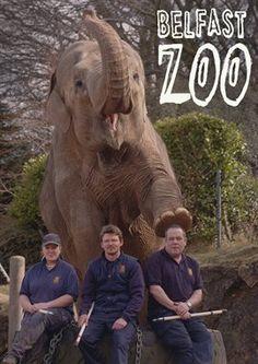 Belfast Zoo - Season 1 (2016) Television - hoopla digital