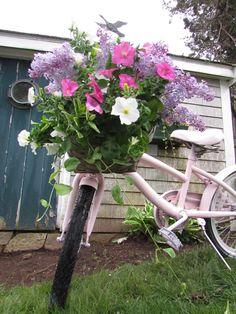 pink bike, pretty flowers