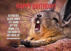 Funny Birthday Wishes & Funny Birthday Quotes: Funny Birthday Messages Happy Birthday Brother Messages, Funny Birthday Message, Funny Happy Birthday Song, Happy Birthday Wishes Messages, Birthday Wishes For Mother, Romantic Birthday Wishes, Birthday Wish For Husband, Birthday Quotes, Birthday Cards
