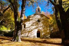 LURF09 - Notre Dame de Lure - Montagne de Lure - Alpes de Haute Provence 04