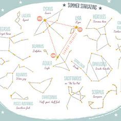 Libros para nios crea tu circo isidro ferrer bebestilo ingen look up into the summer night sky and be able to determine what stars you are looking at with this free printable summer constellation map publicscrutiny Gallery