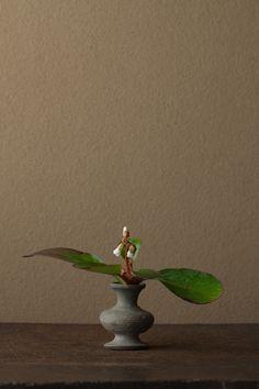 2012年4月22日(日)     もとは「雪の舌」で、花弁のかたちからの名とも。   花=雪の下(ユキノシタ)   器=須恵器壺(古墳時代)
