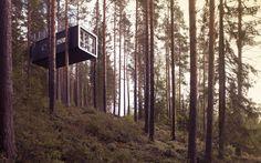 Amazing Treehotels in Sweden