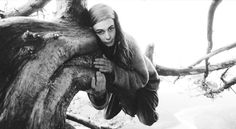 Nos final dos anos 90, a ativista Julia Butterfly passou 738 dias em cima de uma árvore, para evitar que a sequoia de mais de 60 metros de altura fosse derrubada. Ela só desceu depois de receber um documento legal, que impedia o corte da vegetação.