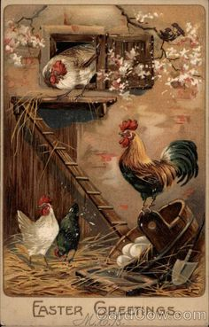 Rooster and Chickens in a Henhouse -- Gallo y gallinas en un gallinero Rooster Art, Rooster Decor, Vintage Greeting Cards, Vintage Postcards, Vintage Images, Arte Do Galo, Motifs Animal, Chickens And Roosters, Decoupage Paper