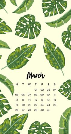 March Tropical Leaf Phone WallpapersHere are four monthly phone wallpapers with matching desktop wallpapers. I created versions starting on Monday and Sunday so you can pick the one you use more...