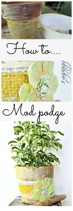 How to mod podge on terra cotta