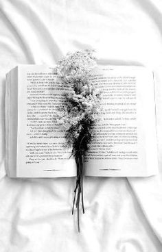 Read White Aesthetic from the story Colour/Aesthetic Themes by epiphanydjh (anna🌻) with reads. Black And White Aesthetic, Aesthetic Themes, Aesthetic Colors, Book Aesthetic, Black N White, Aesthetic Pictures, Pale Aesthetic, Athena Aesthetic, Black And White Flowers