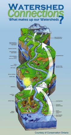 Watershed Diagram Worksheet Soil and water on pinterest water cycle ...