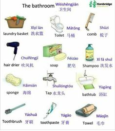 Learn Chinese language from Karen - A Chinese girl. I will master you in pronouncing chinese words with Pinyin. Basic Chinese, How To Speak Chinese, Chinese English, Learn Chinese, Chinese Fruit, Mandarin Lessons, Learn Mandarin, Chinese Phrases, Chinese Words