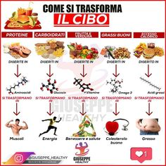 Conseils fitness en nutrition et en musculation. Tips Fitness, Fitness Nutrition, Muscle Food, Nutrition Information, Nutrition Education, Menu Planning, Healthy Lifestyle, Food And Drink, Yummy Food