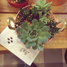 Faltam apenas 8 dias pro Natal! Escolha presentear com significado! Estamos na @feirarosenbaum com muitas opções de plantas e lindos cartões para presente da @branco_design .