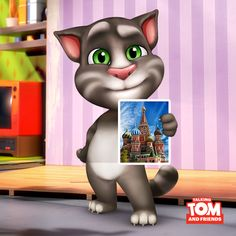 Talking Tom is really enjoying this week. xo, Talking Angela #TalkingAngela #MyTalkingAngela #LittleKitties #TalkingTom #TravelTheWorld #explore #postcards #China