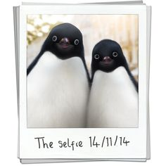 Repin: Monte<3 #selfie love the John Lewis advert!