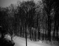 It's been a odd winter so far for the #Northeast but a beautiful one! ___________________________________ #Impreza #subaru #Flat4 #japan #Wagon #XV || #crosstrek #jdm #Ny #newyork #nyc #blizzard2016 #AWD #carbon #exotic #photography #japanese ||#powerful #performance #turbocharged #snow #aerodynamic #lightweight #amazing #advanced #instagood #follow #instalike || #jtechophoto  Follow the crew: @ny_car_enthusiast @new_york_car_spotter by jtecho_photography